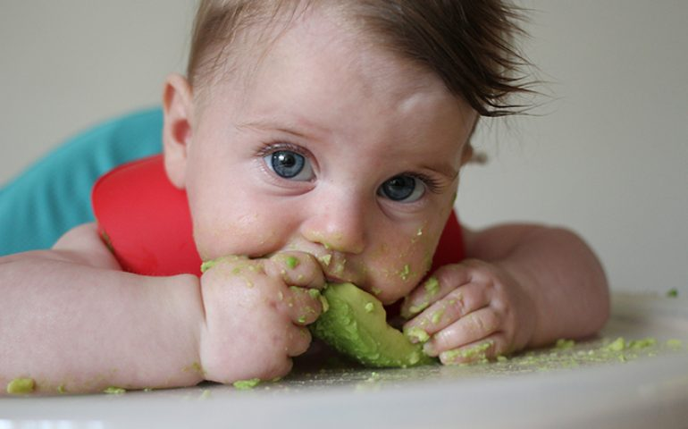 Baby_weaning_day_one_avocado2
